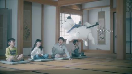 """聖徳太子の愛犬""""雪丸""""がドローンになって縁の地を飛び回る王寺町PR動画「雪丸散歩」に癒される"""