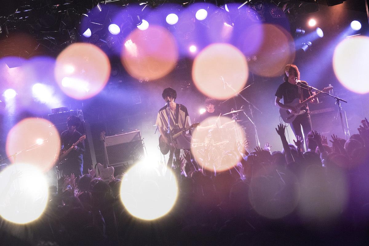 polly photo by Daisuke Miyashita