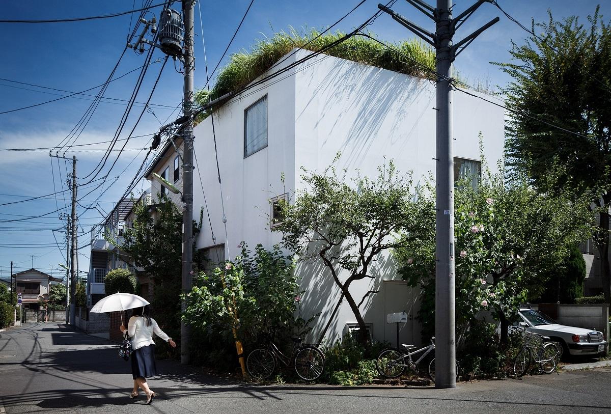 ジェレミ・ステラ《妹島和世/梅林の家》2010年9月2日