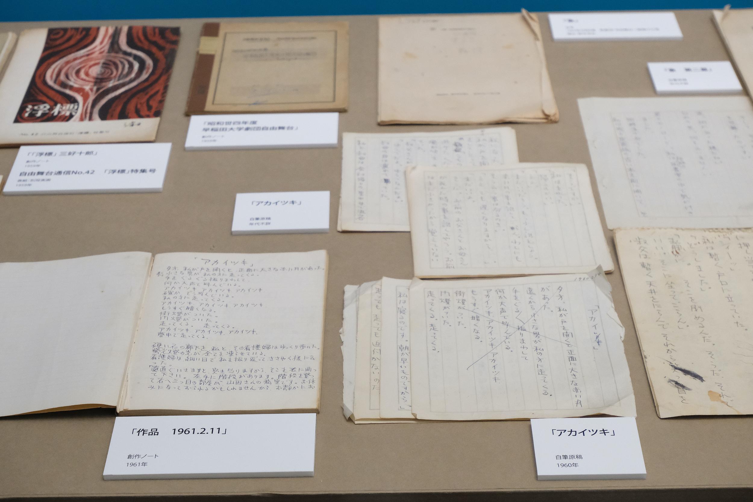 岡室館長による「アカイツキ」が『象』へ至った道筋の解題は、同展の図録に詳しい。