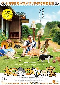 実写版『ねこあつめ』ポスター公開、小説家・伊藤淳史を設置&猫まみれ