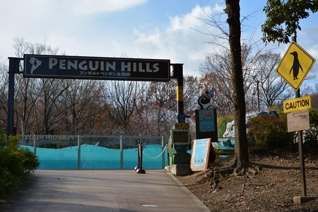 北園にある「ペンギンヒルズ」