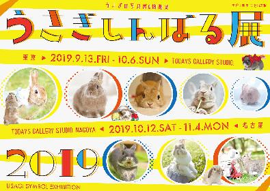 秋の『うさぎしんぼる』展、東京・名古屋で開催 うさぎの写真&グッズを集めた合同写真展&物販展
