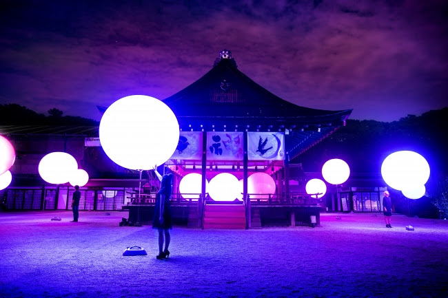 呼応する球体 – 下鴨神社 糺の森 / Resonating Spheres – Forest of Tadasu at Shimogamo Shrine   teamLab, 2016, Interactive Installation, Endless, Sound: Hideaki Takahashi