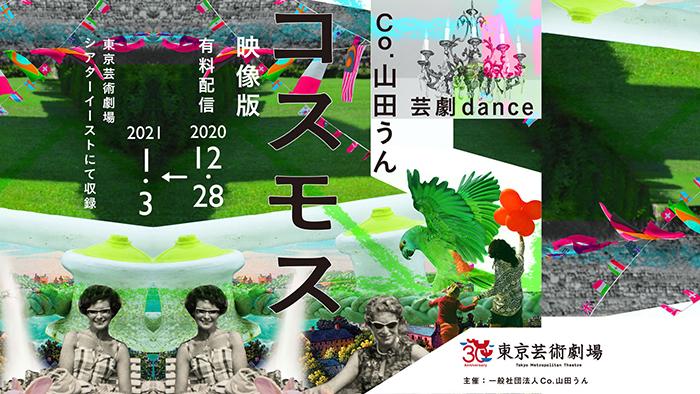 Co.山田うん『コスモス』映像版バナー