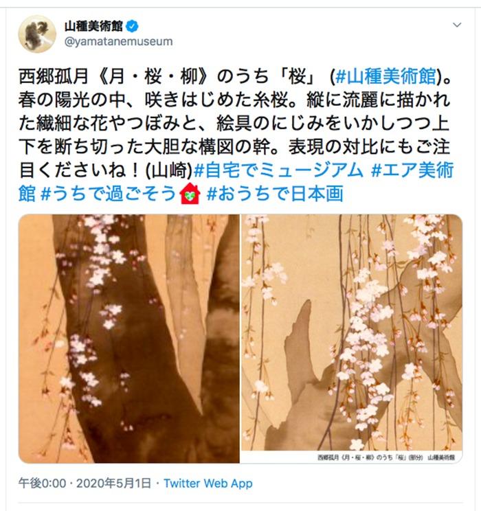 山種美術館ツイッターより引用 (2020年5月1日12時のツイートより)