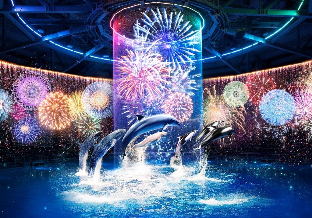 「星花火 –Digital Fireworks– 」夜のドルフィンパフォーマンス
