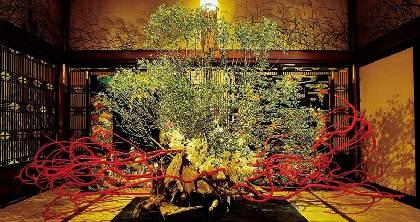 「美をつむぎ出す手を持つ人」假屋崎省吾の世界展