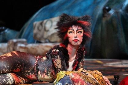 劇団四季『キャッツ』新たな専用劇場をお披露目!「キャッツ・シアターは思い出を辿る場所」