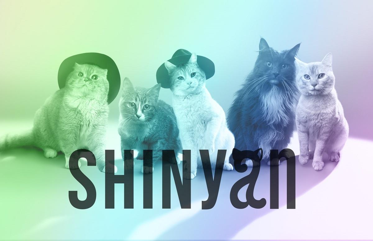 SHINyan(シャイニャン)