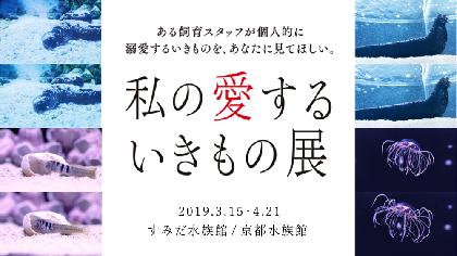 すみだ水族館・京都水族館の合同企画『私の愛するいきもの展』 水族館スタッフの、少しマニアックで強すぎる愛