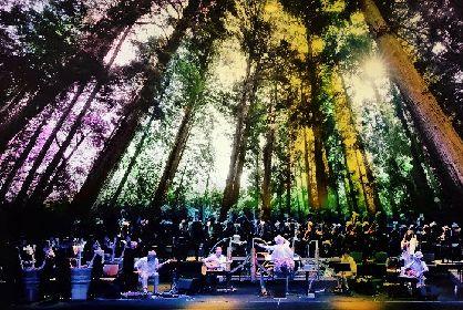木を面白がり、地域を面白がる『奥河内音絵巻』 大阪・河内長野から世界へ、新たなワールド音楽・お祭りを発信!