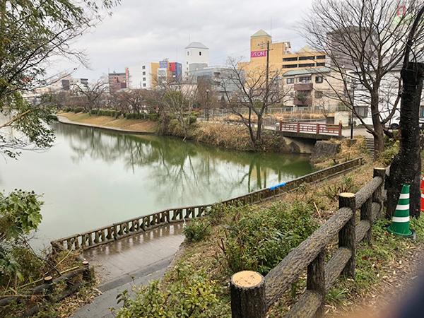 丹波亀山城跡に向かう途中には、お堀の跡が。水鳥が気持ち良さそうに止まっていました。