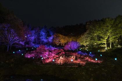 『六甲ミーツ・アート 芸術散歩 2020』ライトアップされた紅葉とアート作品を満喫「ザ・ナイトミュージアム~夜の芸術散歩~」開催