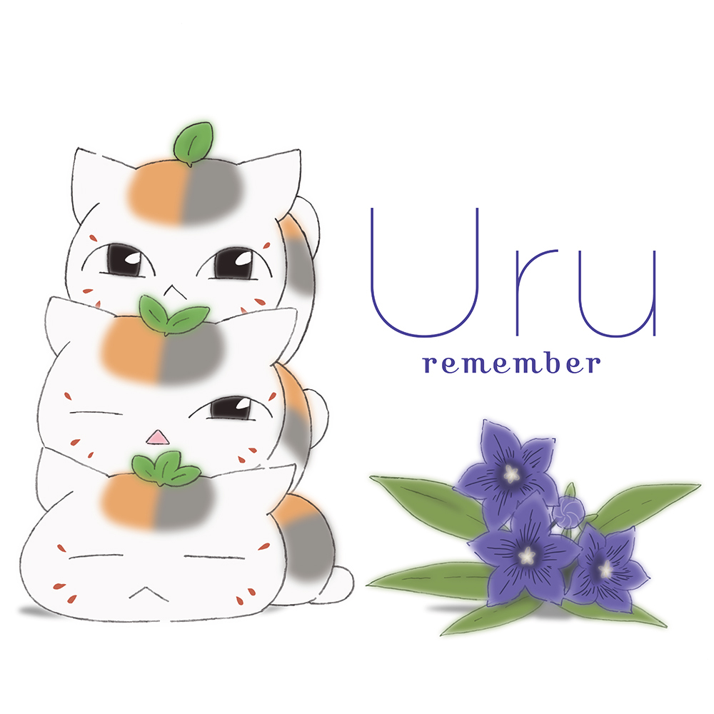 『remember』アニメ盤