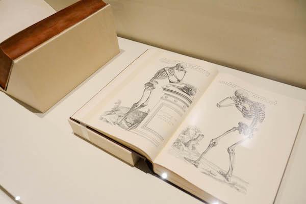 『ファブリカ』(De human corporis fabrica) アンドレアス・ヴェサリウス 1543年 広島経済大学