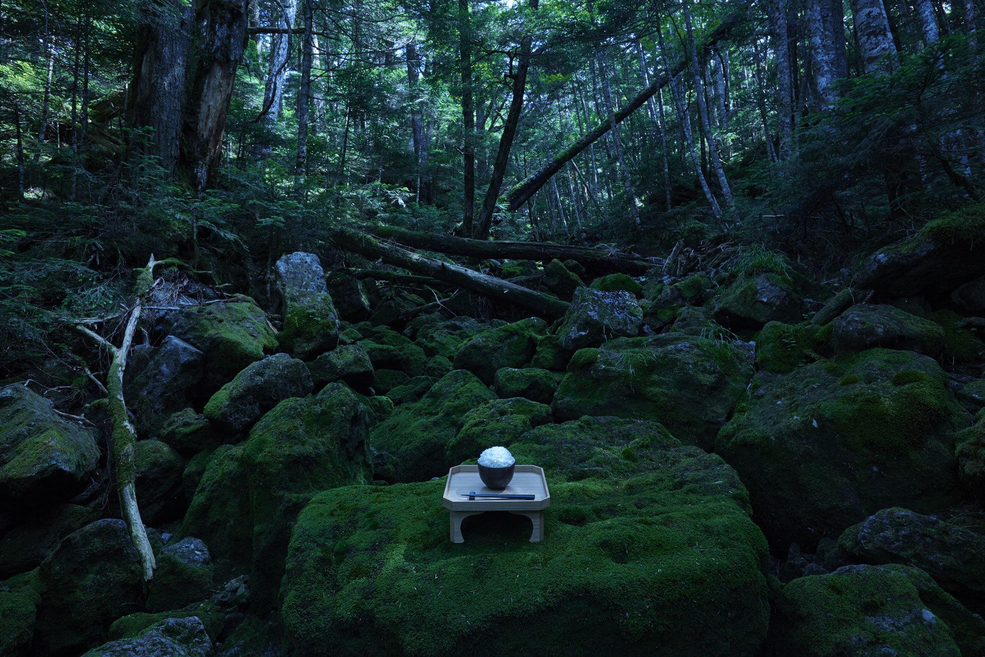 ちなみにこの写真、合成ではないそうです。炊飯器を担いで森に入り、周りの木々も、苔むした岩も、全て自然のままだそうです。かっこよすぎませんか。