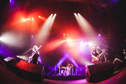 yonige、東名阪Zeppを含む秋のワンマンツアー『君のおへその形を忘れたツアー』の開催を発表