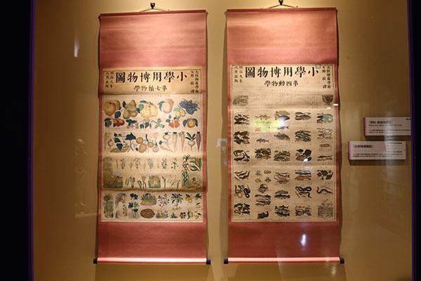 「小学用博物図」1876(明治9)年、国立科学博物館所蔵