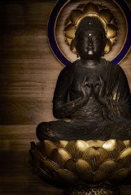 仏教学科の学生が創る展覧会、大正大学のアートスペースで開催 『眠れる慈悲―21世紀の仏教を考える 僕たちの視線、私たちの視界』
