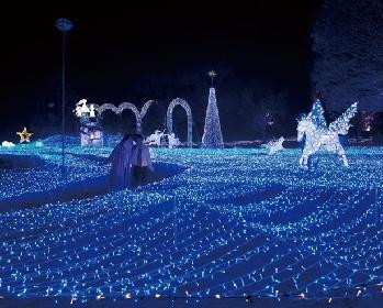 クリスマスに見たい!京都で話題のイルミネーション3選