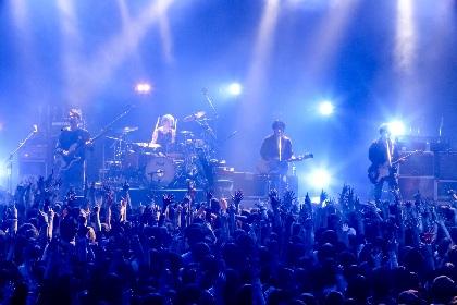 マニアの、マニアによる、マニアのためのライブが浮き彫りにした、ロックバンド・ストレイテナーの真髄