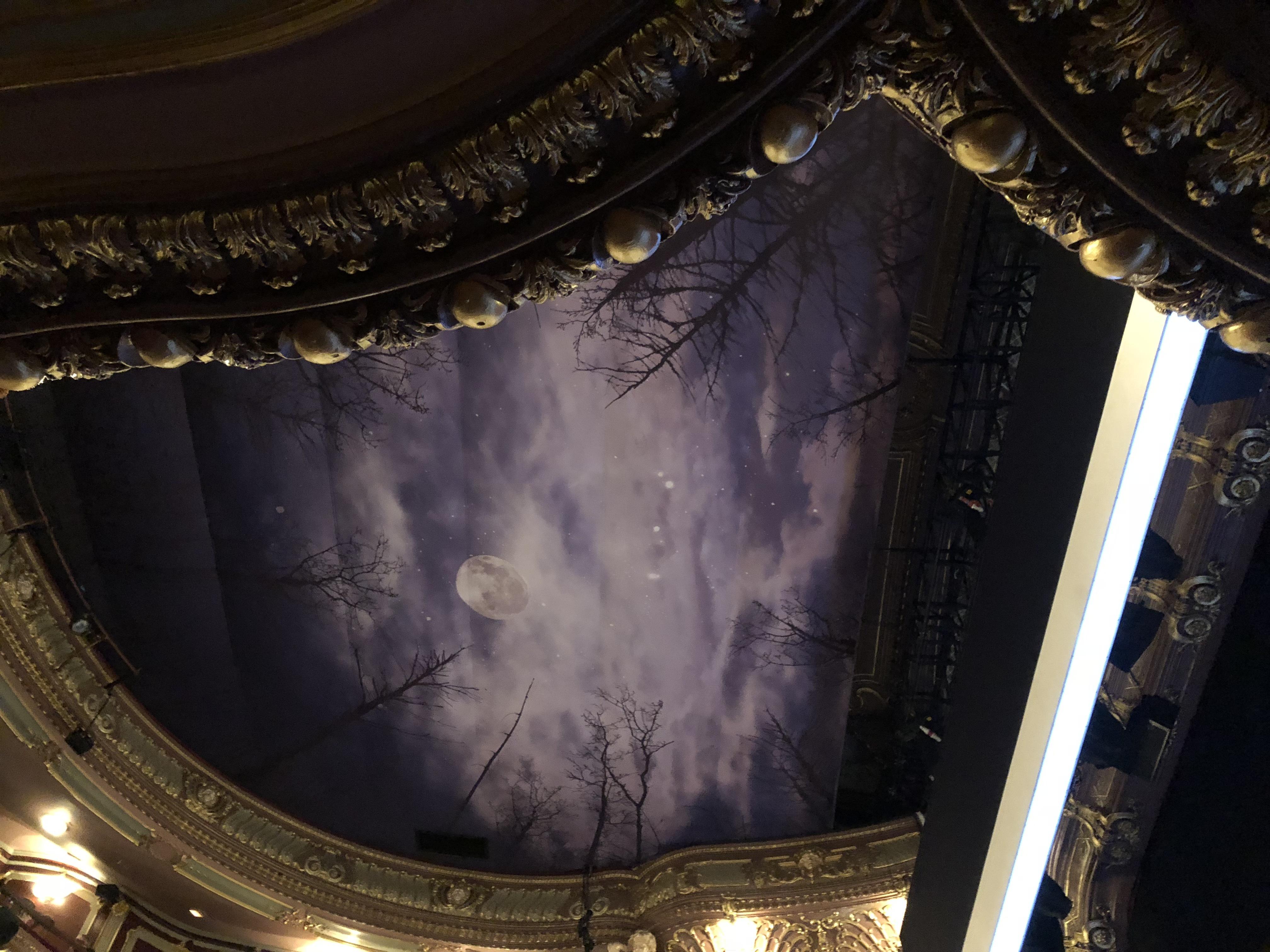 天井に描かれた風景