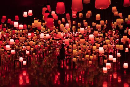 """チームラボ、九州・御船山楽園で開催中のアート展『かみさまがすまう森』 今の季節だけ見られる""""秋""""の色が登場"""