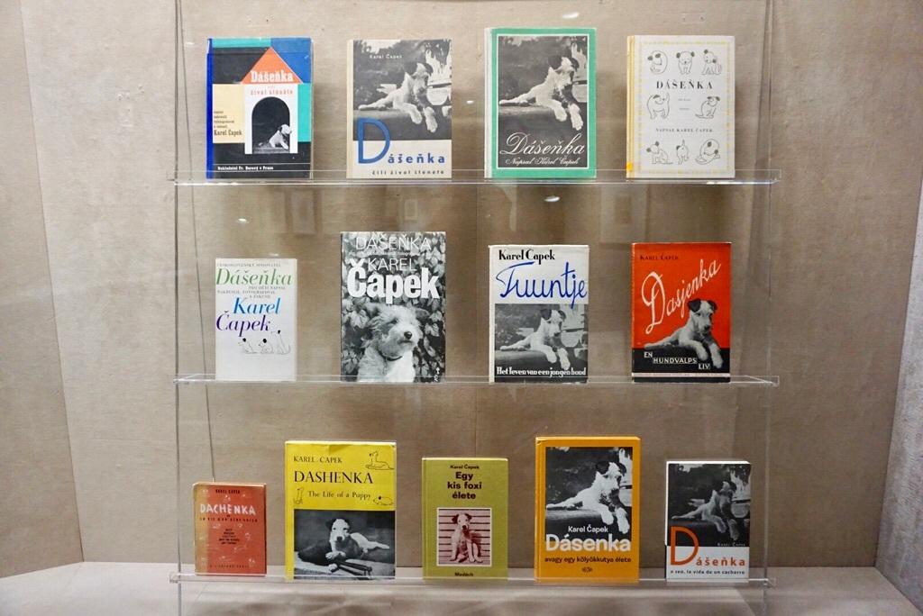 さまざまな装丁で出版された『ダーシェンカまたは子犬の生活』