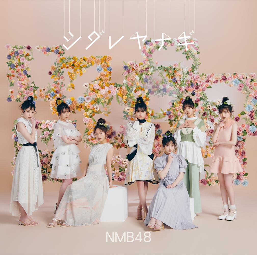 NMB48 シダレヤナギ