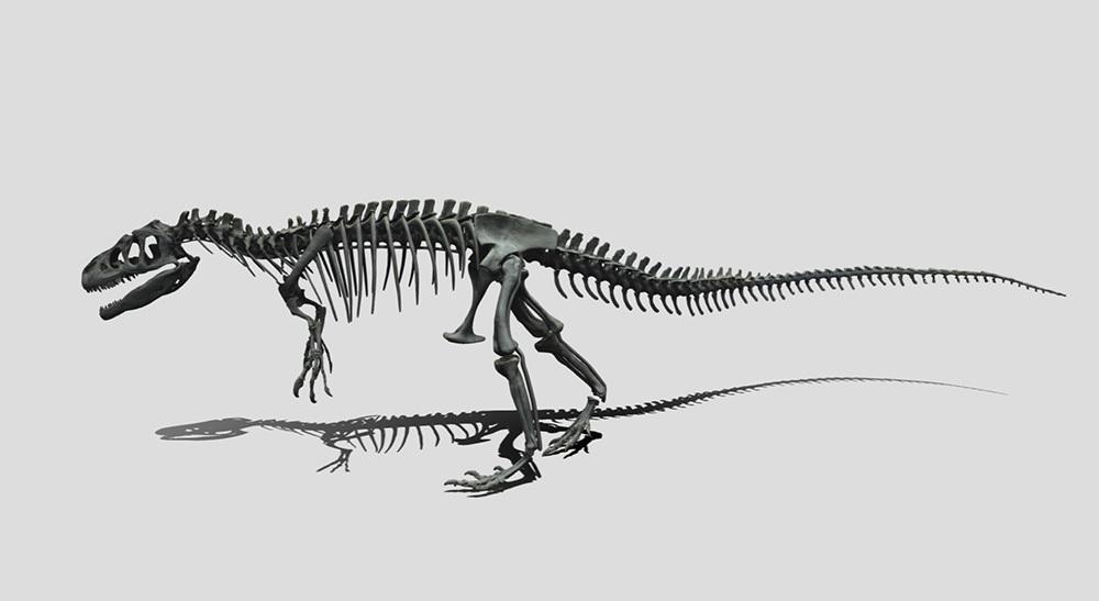 アロサウルス全身骨格化石デジタルデータ (写真=国立科学博物館・凸版印刷株式会社提供)