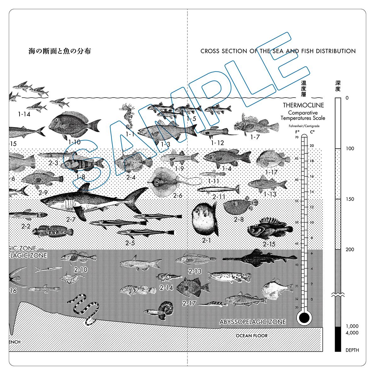 魚分布図チケットホルダー