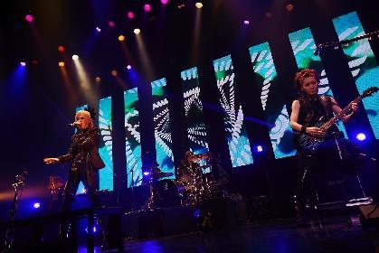 LM.C 13周年記念ライブで示したバンドの歴史と未来、オフィシャルレポート到着