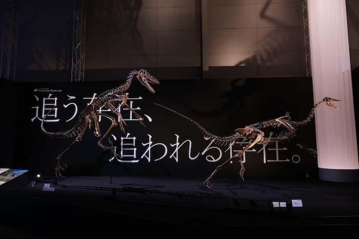 「フィールドツアー」展示風景 (M.ジャクソンもびっくりの斜め立ち!)