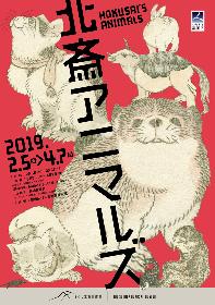葛飾北斎らが描いた生き物の作品を紹介する企画展『北斎アニマルズ』が、すみだ北斎美術館で開催