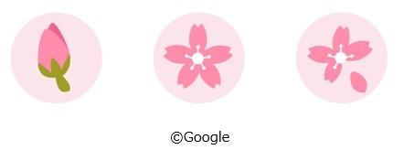 Google マップアプリ(iOS版のみ)のカード上には、 開花前、 満開、 葉桜の3種類のマークを表示