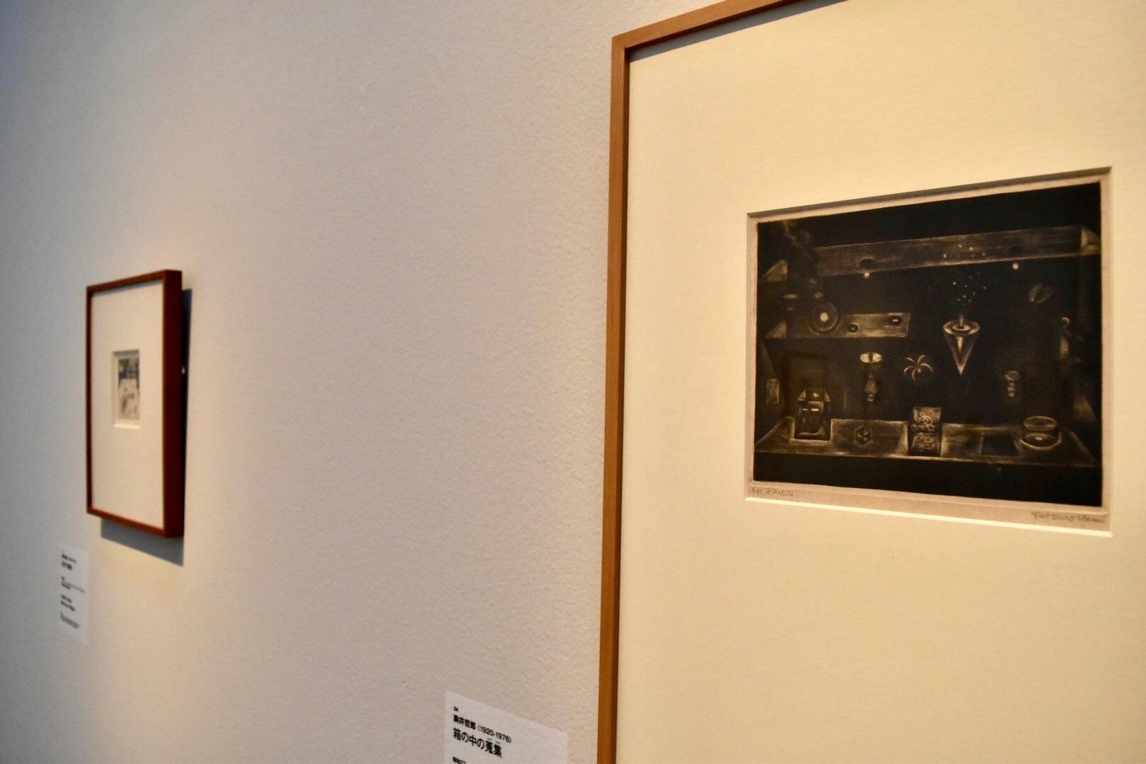 《箱の中の蒐集》 駒井哲郎 昭和27年 町田市立国際版画美術館