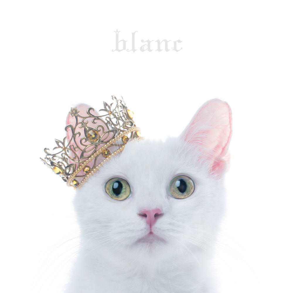 "Aimer『BEST SELECTION ""blanc""』"