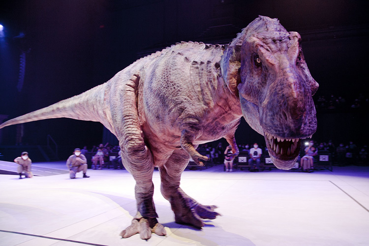 ティラノサウルス。巨大な体躯と、軽自動車も噛み潰せるパワーが特徴。