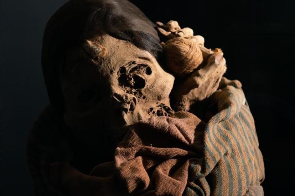 チャチャポヤのミイラ 顔出しミイラ/ペルー、レイメバンバ/先コロンブス期、チャチャポヤ=インカ文化/ペルー文化省・レイメバンバ博物館