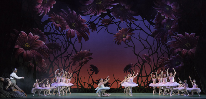 Don Quixote. Artists of The Royal Ballet. c ROH, Johan Persson, 2013.