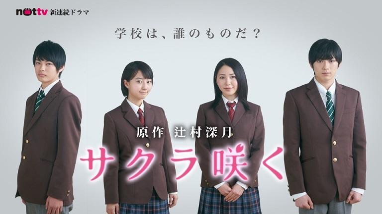 NOTTV 新ドラマ『サクラ咲く』