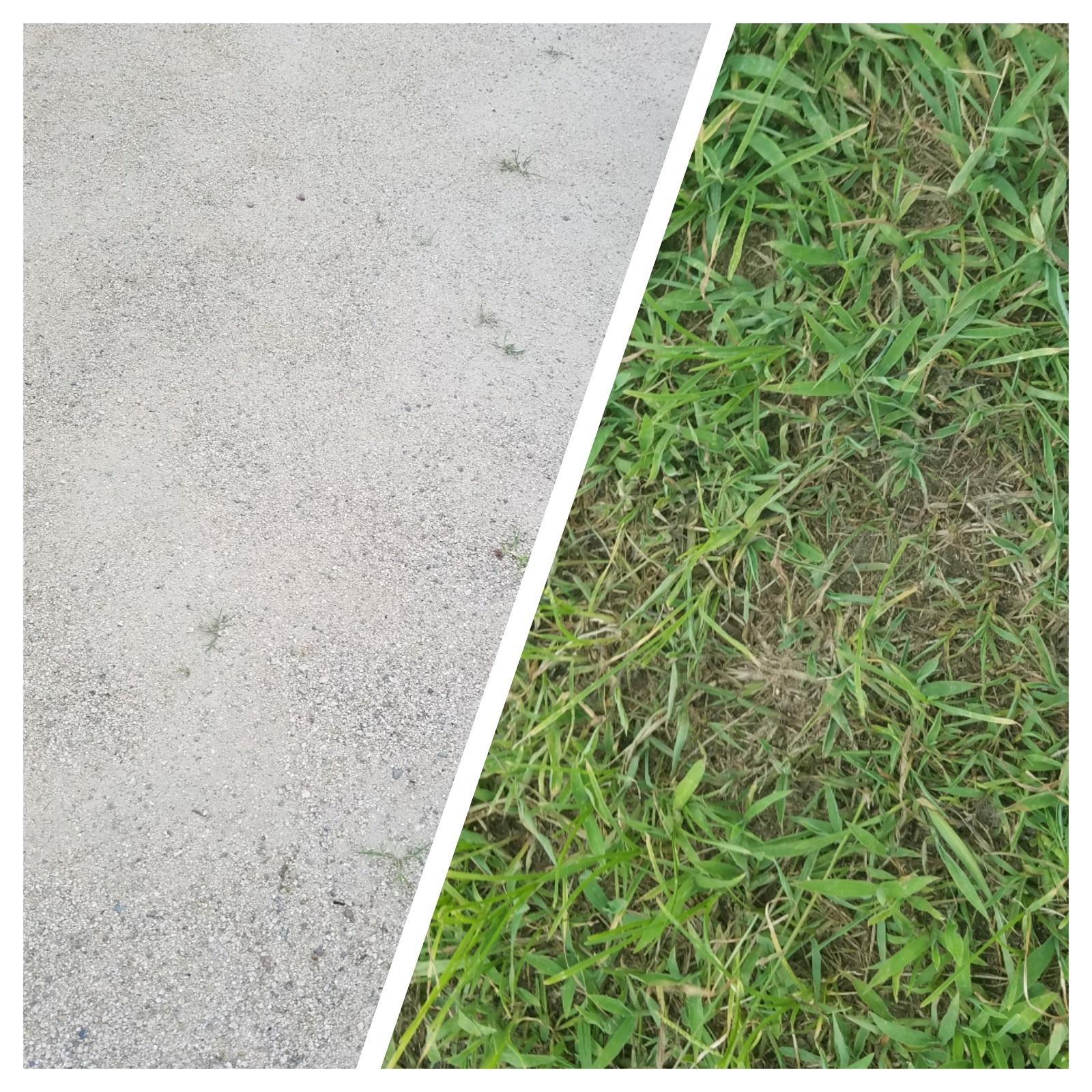 気になる地面は砂利/くさの2タイプ。下駄でも歩けます