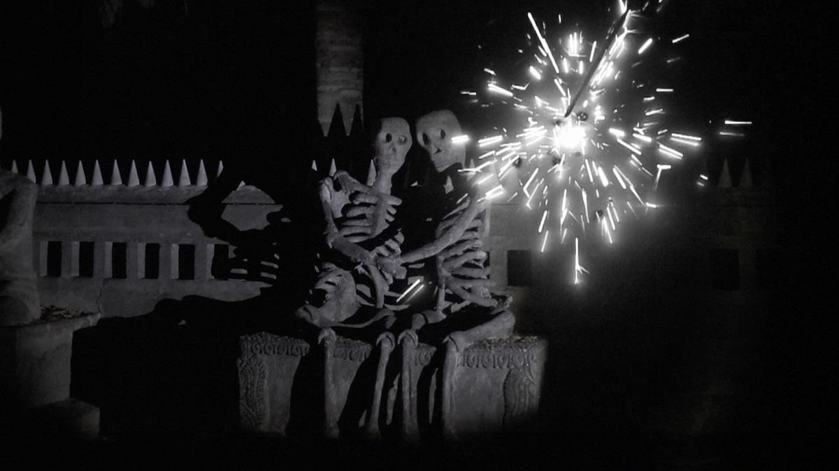 《花火(アーカイヴス)》2014 年 シングルチャンネル・ヴィデオ・インスタレーション HD デジタル、カラー、ドルビーデジタル 5.1、6 分 40 秒