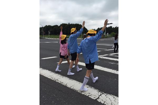 ホーク軍団は、手をあげて横断歩道を渡ります