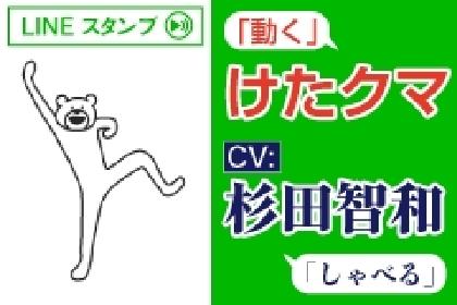 けたたましく動くクマ(CV:杉田智和)が動いて喋る! LINE公式スタンプが配信に