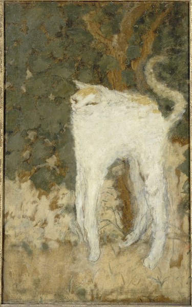 ピエール・ボナール《白い猫》1894年 油彩、厚紙 51.9×33.5cm オルセー美術館 (C)RMN-Grand Palais (musée d'Orsay) / Hervé Lewandowski / distributed by AMF