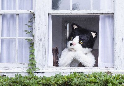むぎ(猫)、2nd EP『窓辺の猫 e.p.』全曲試聴トレイラー公開 オンラインイベントも決定