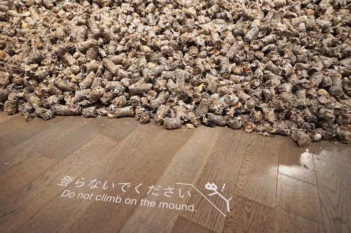 展示台代わりに積まれているのは、RPFという木材やプラスチックなどの廃棄物を資源とした固形燃料だそう。ここにもネコが……!
