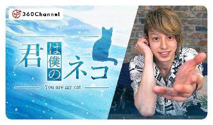 杉江大志、山田ジェームス武、杉江優篤が出演 視聴者がイケメンの飼いネコになる、⼥性向けVRショートドラマ『君は僕のネコ』が配信開始